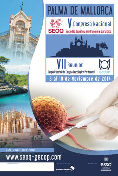 V Congreso Nacional SEOQ y VII Reunión Internacional GECOP