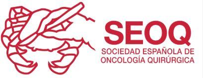 SEOQ – Sociedad Española de Oncología Quirurgica