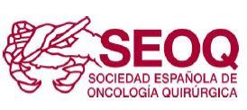 SEOQ - Sociedad Española de Oncología Quirurgica